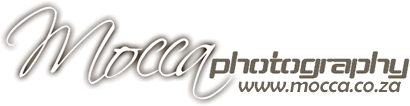 logo mocca 410x106